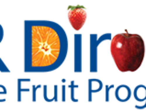A Fruit Program in the Office Helps Productivity